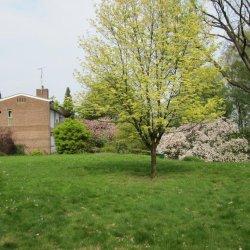 Cultuurherberg met tuin 2 017