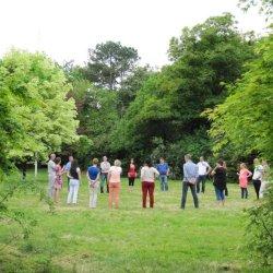 Workshop in de tuin